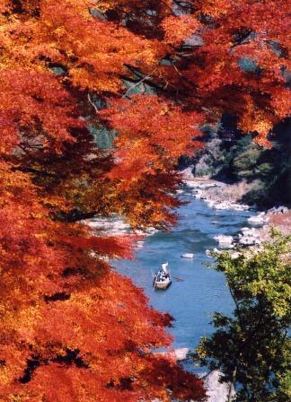 保津川下りの紅葉