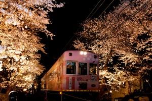 嵐電の桜のトンネル