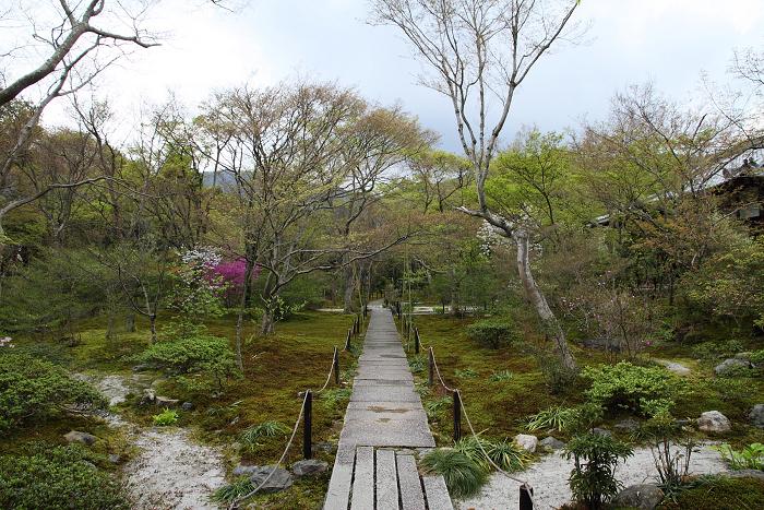 宝筐院の枯山水庭園