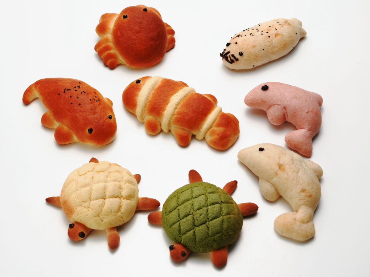 京都水族館土産