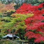 京都五山別格・南禅寺