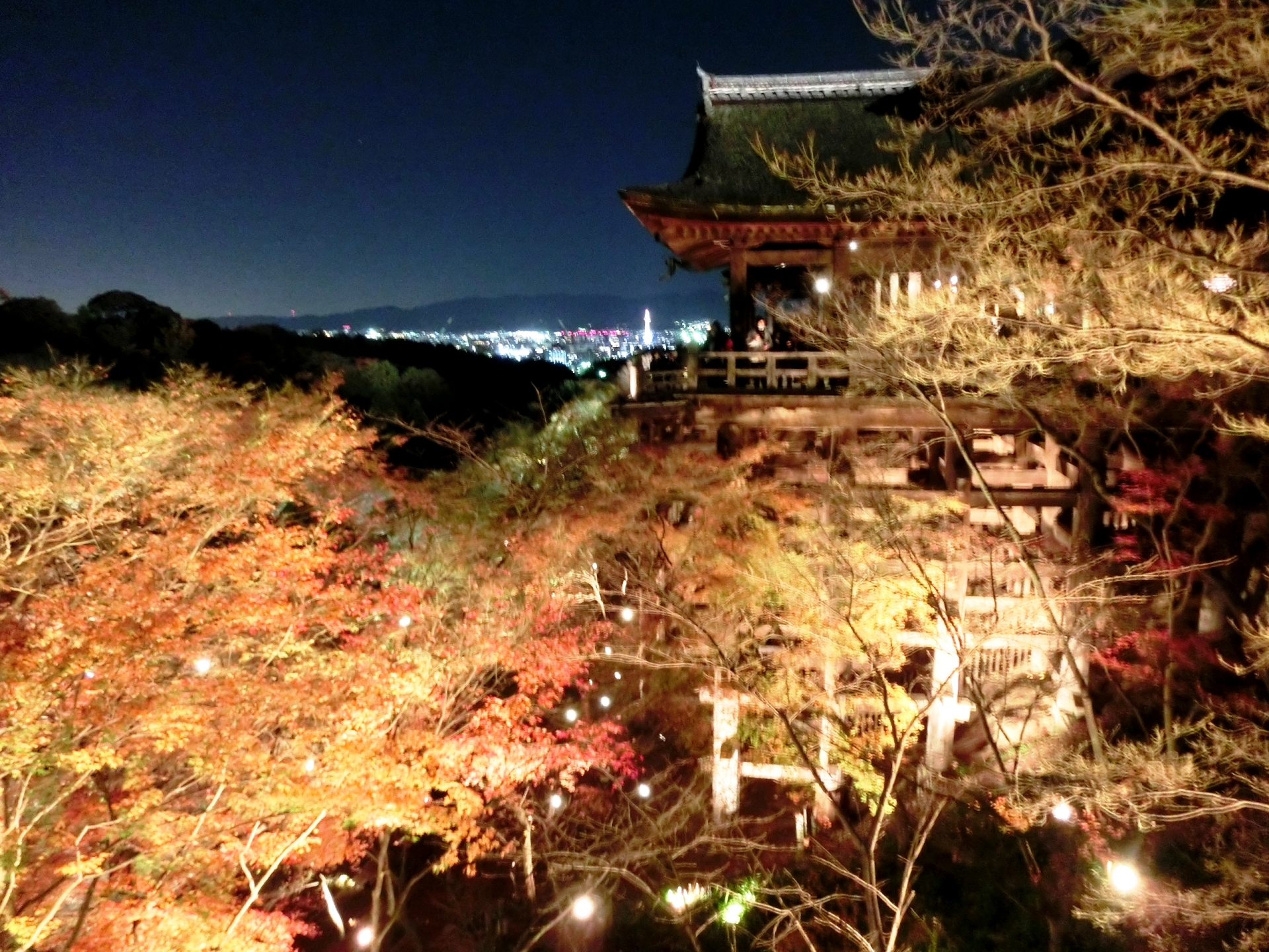 清水寺の桜ライトアップ